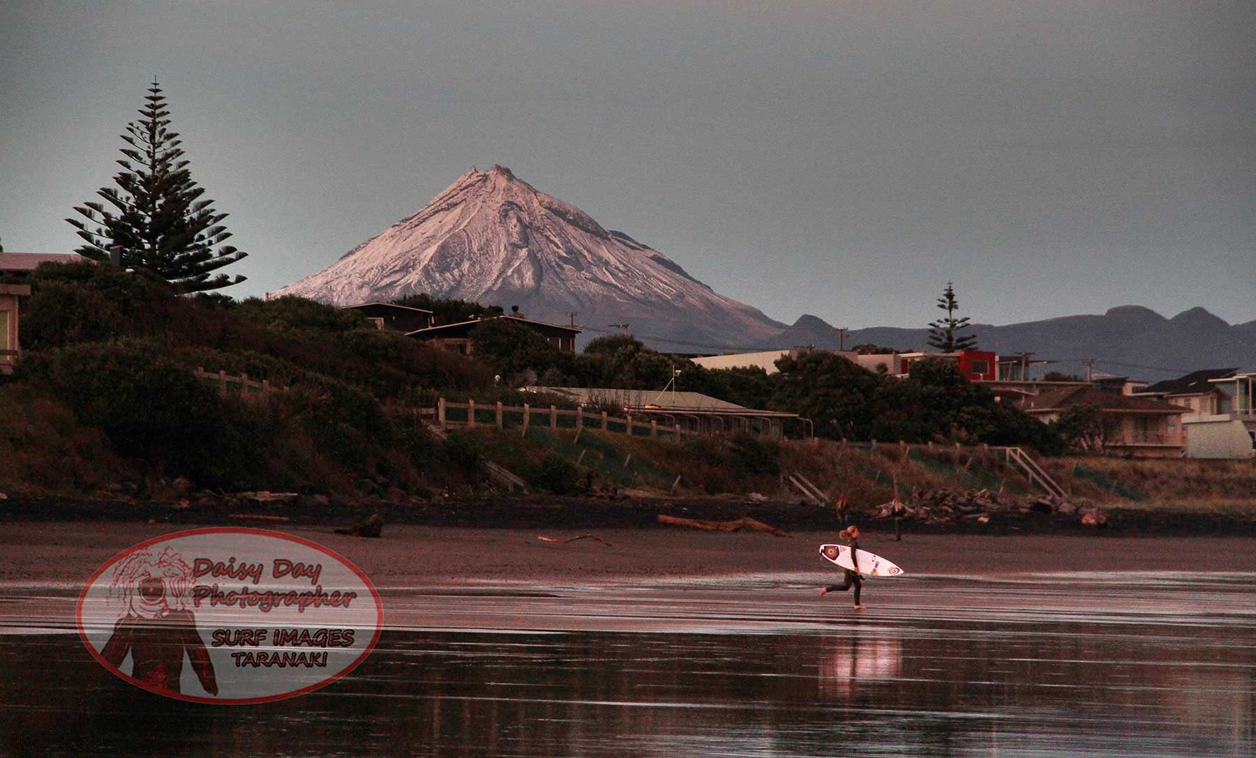 New Plymouth Highlights Tour